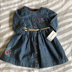 Carter's Denim Dress (12mos)